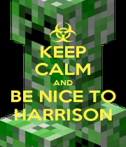 KEEP CALM AND BE NICE TO HARRISON - Personalised Poster A1 size