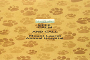 KEEP  CALM AND CALL Mount Laurel Animal Hospital  - Personalised Poster A1 size