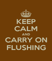 KEEP CALM AND CARRY ON FLUSHING - Personalised Poster A1 size