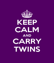 KEEP CALM AND CARRY TWINS - Personalised Poster A1 size