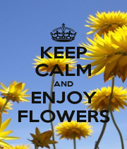 KEEP CALM AND ENJOY FLOWERS - Personalised Poster A1 size