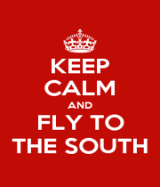 KEEP CALM AND FLY TO THE SOUTH - Personalised Poster A1 size