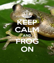 KEEP CALM AND FROG ON - Personalised Poster A1 size