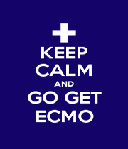 KEEP CALM AND GO GET ECMO - Personalised Poster A1 size