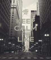 KEEP CALM AND LIKE :)) - Personalised Poster A4 size