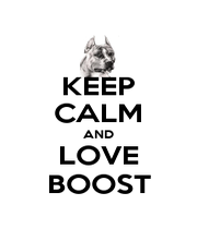 KEEP CALM AND LOVE BOOST - Personalised Poster A1 size