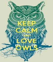KEEP CALM AND LOVE OWLS - Personalised Poster A1 size