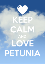 KEEP CALM AND LOVE PETUNIA - Personalised Poster A1 size