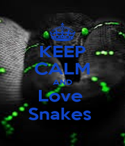 KEEP CALM AND Love  Snakes  - Personalised Poster A4 size