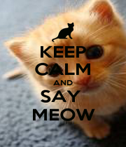 KEEP CALM AND SAY  MEOW - Personalised Poster A1 size