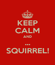 KEEP CALM AND ... SQUIRREL! - Personalised Poster A1 size