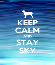 KEEP CALM AND STAY SKY - Personalised Poster A4 size