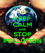 KEEP CALM AND STOP POLLUTION - Personalised Poster A4 size