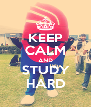 KEEP CALM AND STUDY HARD - Personalised Poster A1 size