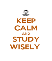 KEEP CALM AND STUDY WISELY  - Personalised Poster A1 size