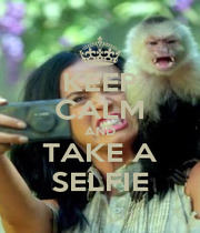 KEEP CALM AND TAKE A SELFIE - Personalised Poster A4 size