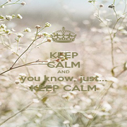 KEEP CALM AND you know, just... KEEP CALM - Personalised Poster A1 size