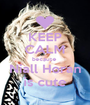 KEEP CALM because  Niall Horan is cute - Personalised Poster A1 size