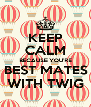 KEEP CALM BECAUSE YOU'RE BEST MATES WITH TWIG - Personalised Poster A1 size