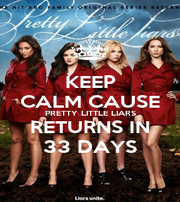 KEEP CALM CAUSE PRETTY LITTLE LIARS RETURNS IN 33 DAYS - Personalised Poster A1 size