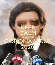 KEEP CALM I SURVIVED CORONA VIRUS 2020 - Personalised Poster A1 size
