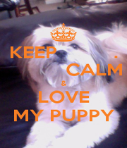 KEEP          .            CALM & LOVE MY PUPPY - Personalised Poster A4 size