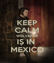 KEEP CALM WOLVERINE IS IN  MEXICO - Personalised Poster A1 size