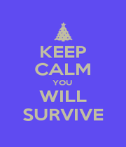 KEEP CALM YOU  WILL SURVIVE - Personalised Poster A1 size