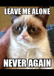 LEAVE ME ALONE NEVER AGAIN - Personalised Poster A1 size