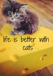 life is better  with cats - Personalised Poster A1 size