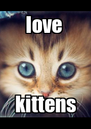 love  kittens - Personalised Poster A1 size