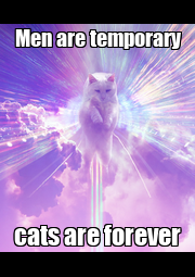 Men are temporary cats are forever - Personalised Poster A4 size