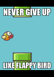 NEVER GIVE UP LIKE FLAPPY BIRD - Personalised Poster A4 size