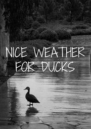 NICE WEATHER FOR DUCKS  - Personalised Poster A4 size