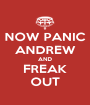 NOW PANIC ANDREW AND FREAK OUT - Personalised Poster A4 size