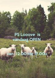 PS Looove  is vandaag OPEN    van  12.00 tot 17.00u - Personalised Poster A1 size