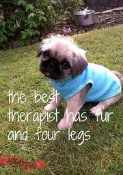 the best  therapist has fur and four legs - Personalised Poster A4 size