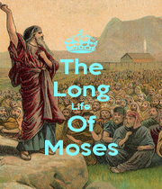 The Long Life Of Moses - Personalised Poster A1 size