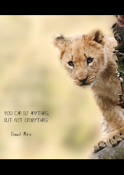 YOU CAN DO ANYTHING, BUT NOT EVERYTHING  -David Allen - Personalised Poster A4 size