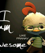 LIKE PRANAV - Personalised Poster A1 size