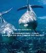 14 de outubro DIA INTERNACIONAL PARA SALVAR OS GOLFINHOS DO JAPÃO - Personalised Poster A1 size