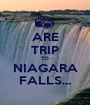 ARE TRIP TO NIAGARA FALLS... - Personalised Poster A1 size