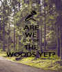 ARE WE OUT OF THE WOODS YET? - Personalised Poster A1 size