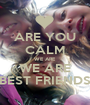ARE YOU CALM WE ARE WE ARE BEST FRIENDS - Personalised Poster A1 size