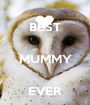 BEST  MUMMY  EVER - Personalised Poster A1 size