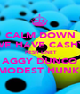 CALM DOWN WE HAVE CASHY  PESH LINET AGGY DUNCO MODEST HUNK  - Personalised Poster A1 size