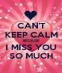 CAN'T KEEP CALM BECAUSE I MISS YOU SO MUCH - Personalised Poster A1 size