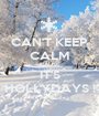 CAN'T KEEP CALM CAUSE IT'S HOLLYDAYS ! - Personalised Poster A1 size