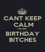 CANT KEEP  CALM ITS MY BIRTHDAY BITCHES - Personalised Poster A1 size