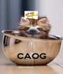 CAOG - Personalised Poster A1 size